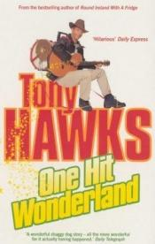 book cover of One Hit Wonderland by Tony Hawks
