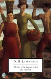book cover of The Fox by D. H. Lawrence