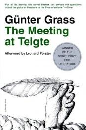 book cover of The Meeting at Telgte by Günter Grass