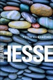 book cover of Peter Camenzind by Hermann Hesse