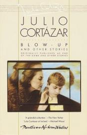 book cover of Blow Up and Other Stories by Julio Cortazar