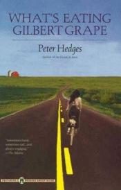 book cover of Gilbert Grape. Irgendwo in Iowa by Peter Hedges