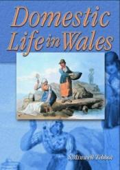 book cover of Domestic Life in Wales by Sara Minwel Tibbott