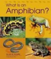 book cover of What Is an Amphibian? (Animal Kingdom) by Lola M Schaefer