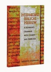 book cover of Intermediate Biblical Hebrew by Andrew E. Steinmann
