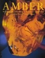 book cover of Amber: Window to the Past by David Grimaldi
