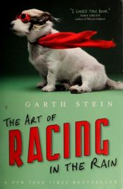 book cover of The Art of Racing in the Rain by Garth Stein