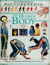 book cover of The Human Body (Picturepedia) by Fiona Payne