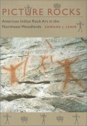book cover of Picture rocks : American Indian rock art in the Northeast woodlands by Edward J. Lenik