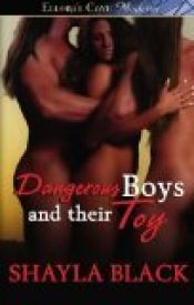 book cover of Dangerous Boys & Their Toy by Black, Shayla by unknown author