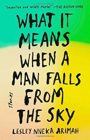 book cover of What It Means When a Man Falls from the Sky by Lesley Nneka Arimah