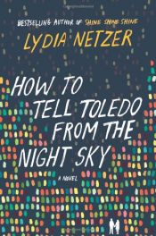 book cover of How to Tell Toledo from the Night Sky: A Novel by Lydia Netzer