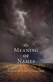 book cover of The Meaning of Names by Karen Shoemaker